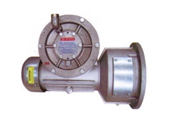 Réducteur GJJ Construction Hoist GearBox